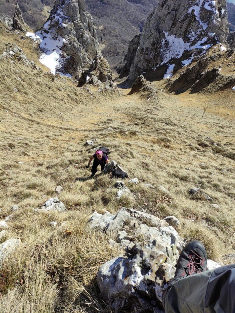 proviamo a raggiungere la cresta vera e propria come farebbero le capre...