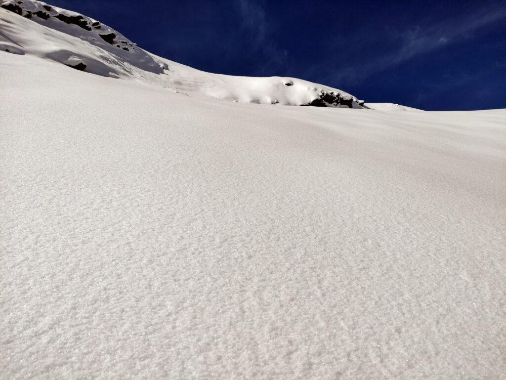 la perfezione della neve a questa quota: polvere