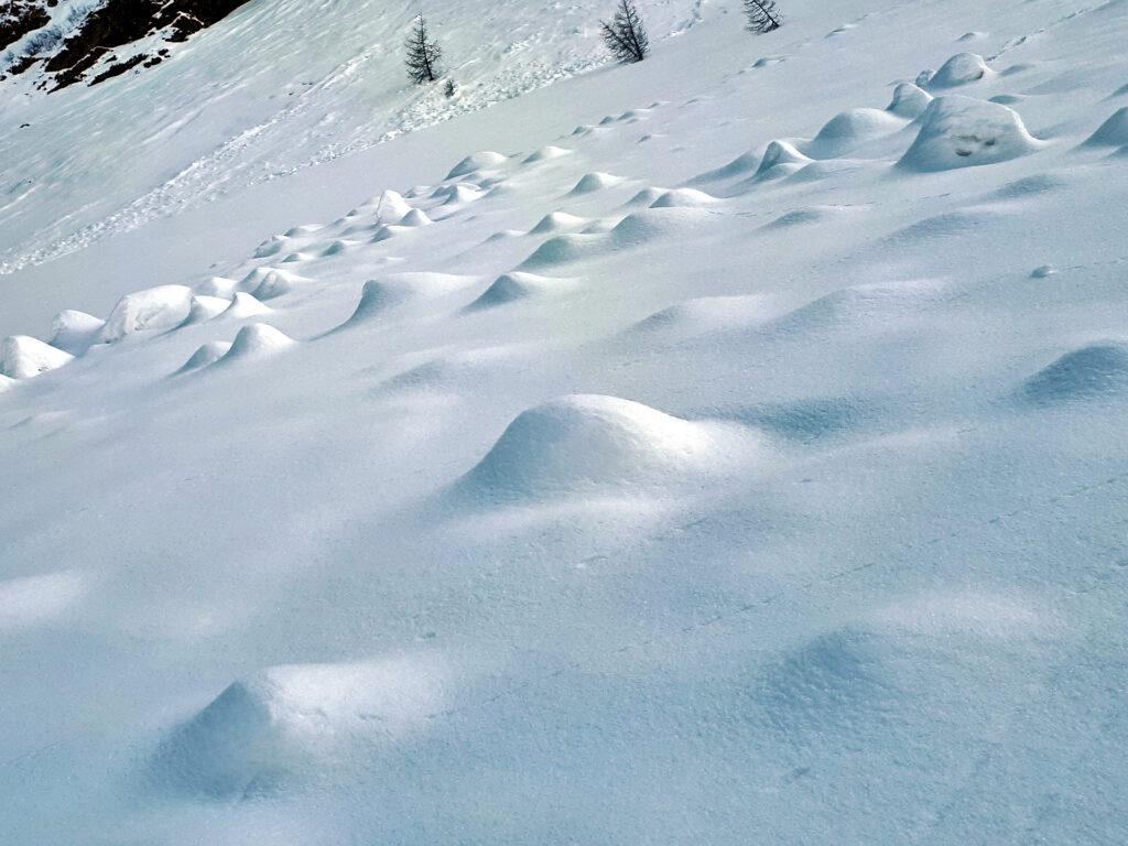il paesaggio, con la neve, si trasforma: nel macro e nel micro