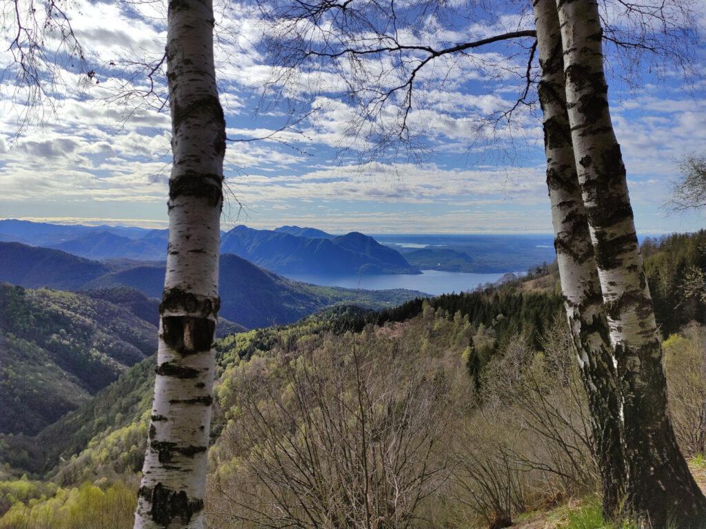 Già dopo pochi minuti di cammino inizia ad aprirsi il paesaggio verso il lago Maggiore