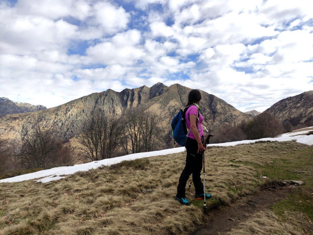 Erica all'alpe Curgei dà un primo sguardo verso la nostra cima di oggi