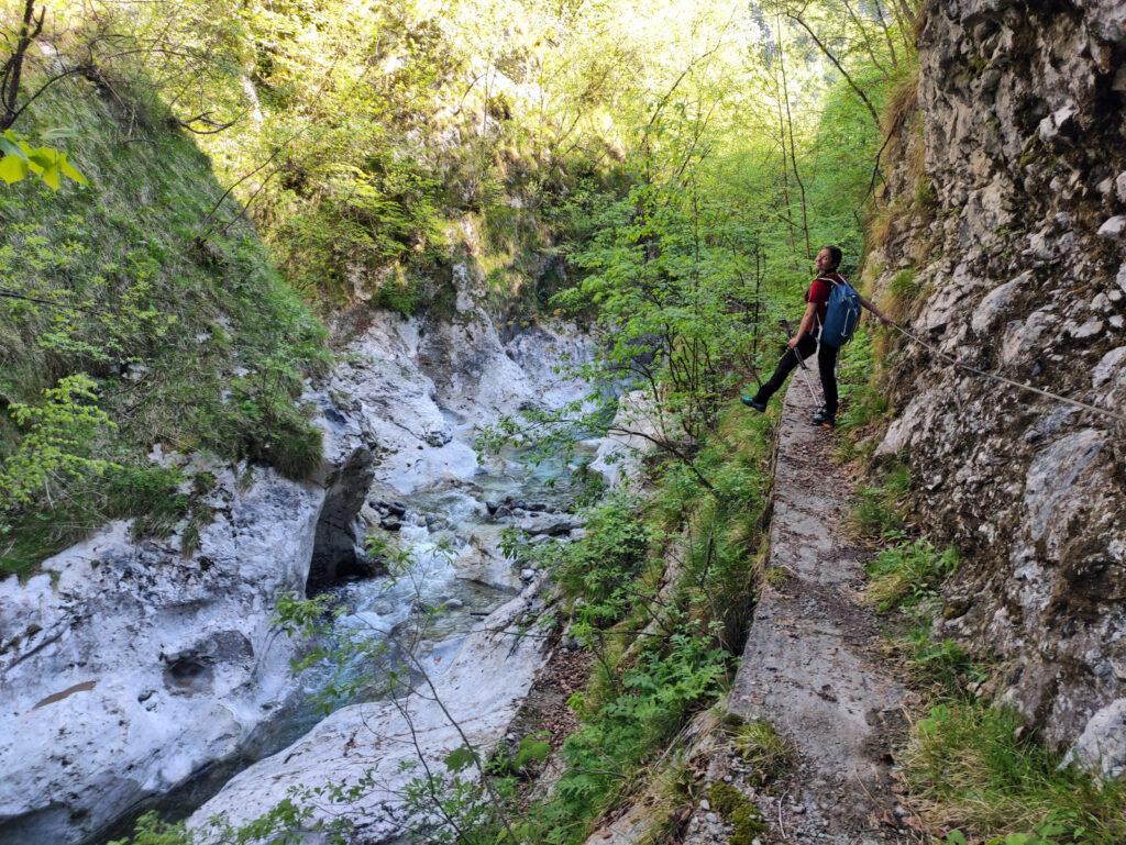 In alcuni tratti il sentiero lungo il rio Parina è attrezzato con cavi metallici