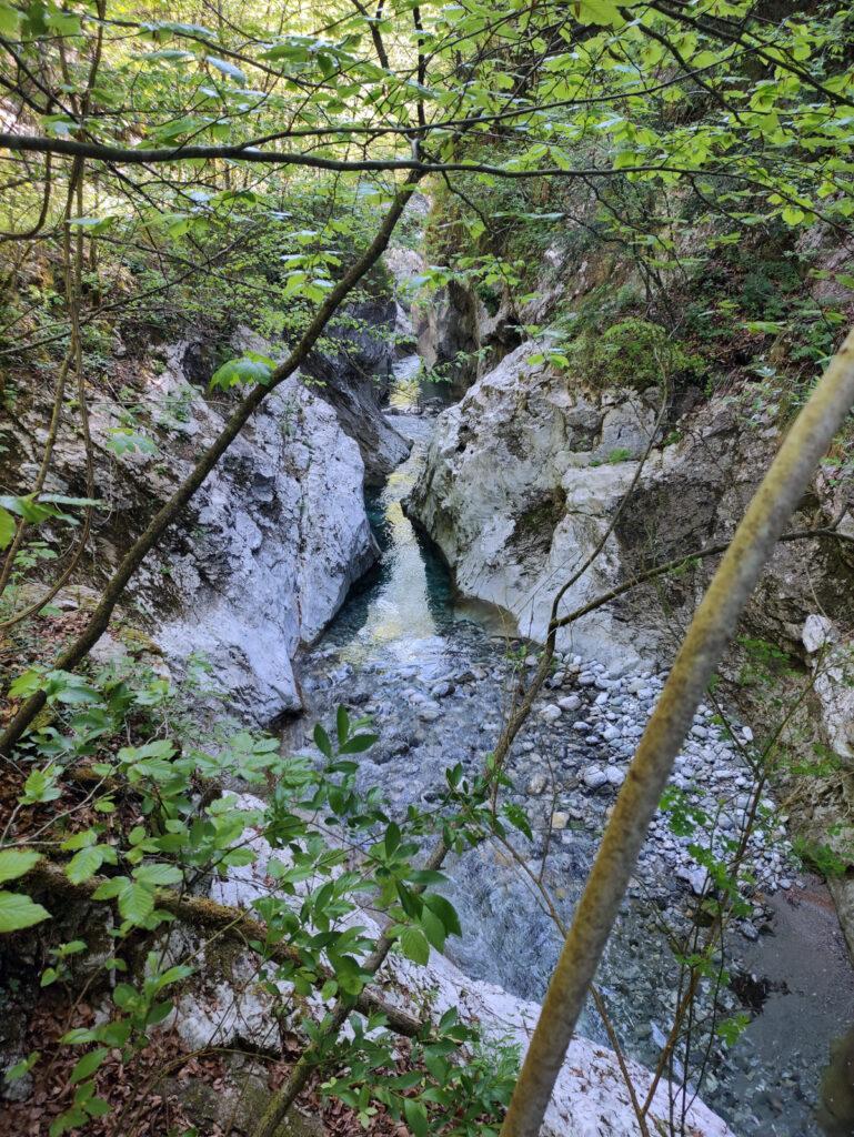 uno dei tanti canyon scavati dal torrente Parina
