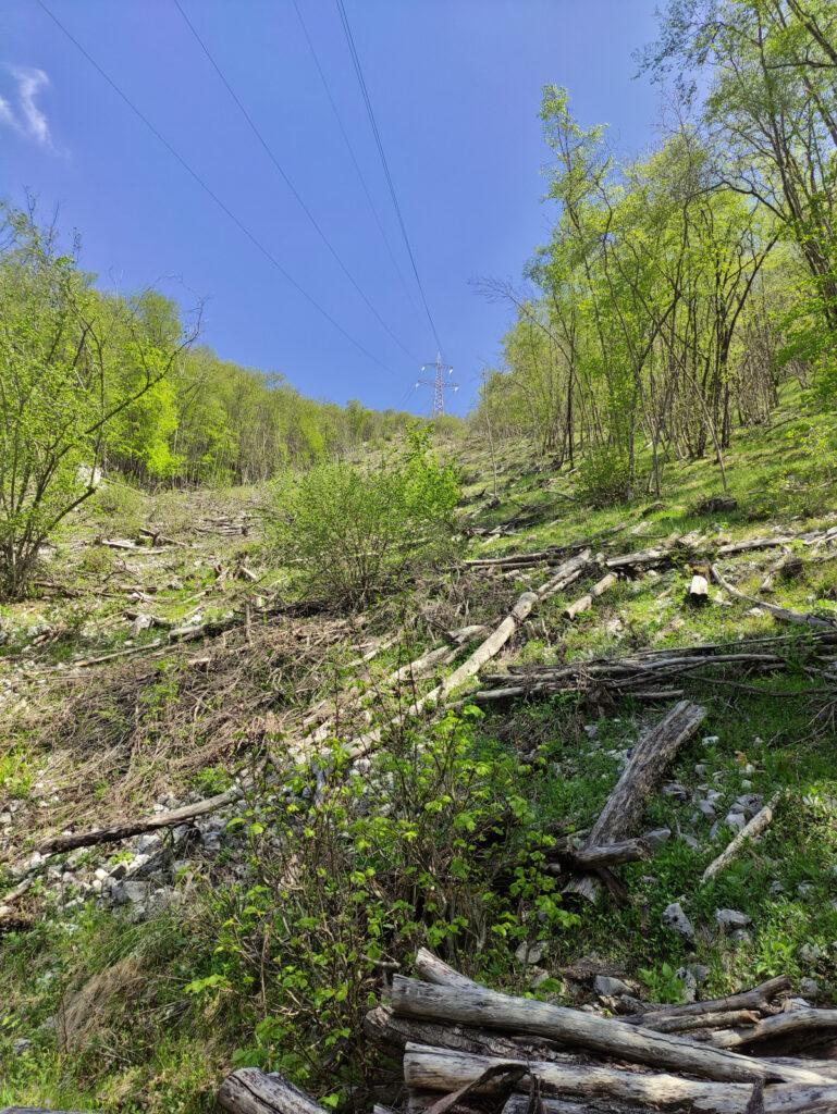 Da qua si vede il prossimo pilone ma il sentiero per raggiungerlo sale un poco più a destra