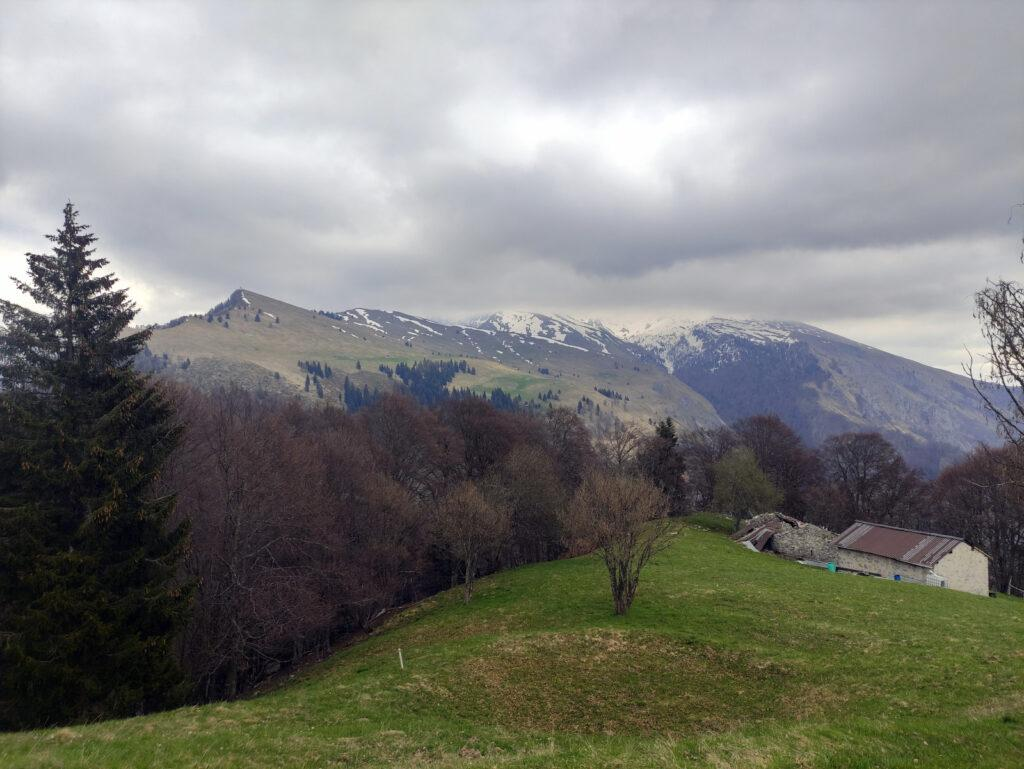 Scendiamo nuovamente fino alla baita Moss ma anche al ritorno le nubi ci impediscono la vista della cima del Menna