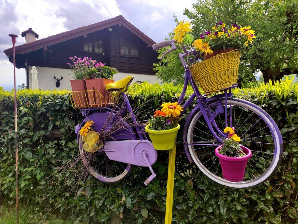 Le tipiche biciclette colorate e fiorite di cui è cosparsa tutta la salita da Coggiola a Le Piane