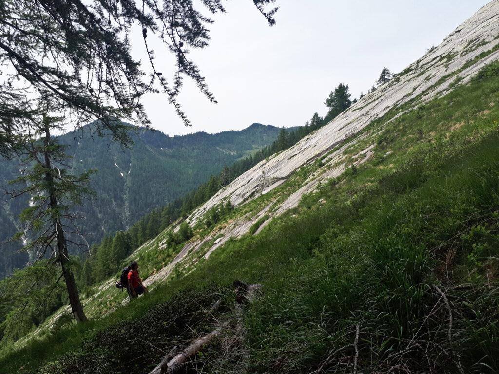 eccoci all'inizio della prima piodata: erba e roccia