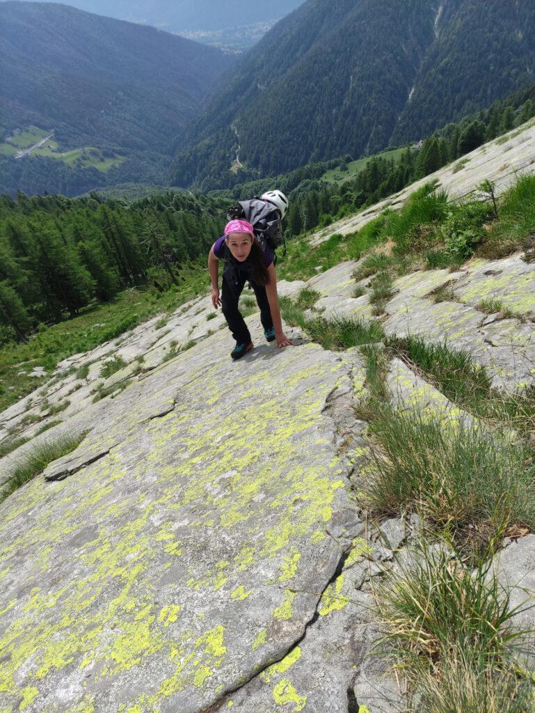 si sale sfruttando la roccia, molto più affidabile dell'erba