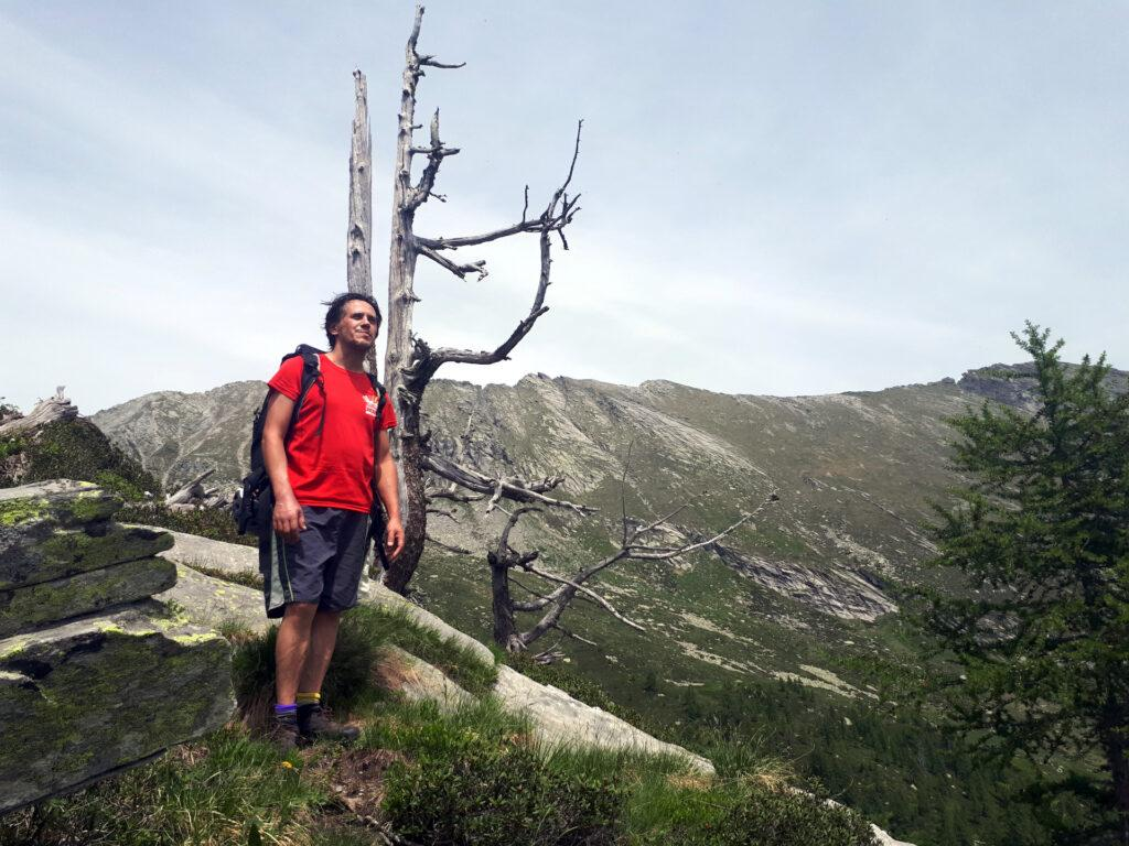 il morto in piedi che segna il termine della prima piodata (l'albero, si intende)