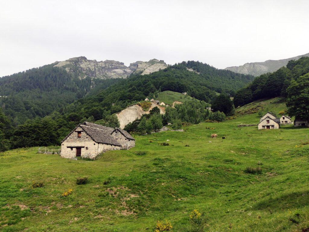 proseguiamo verso l'Alpe Vei