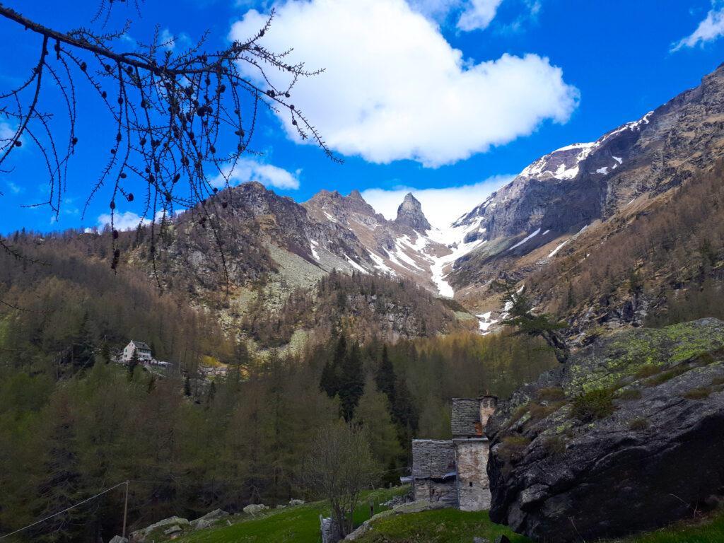 eccoci negli alpeggi dell'Alpe Solcio: a sinistra campeggia il Rifugio Crosta, davanti a noi la Scheggia di Marsasca e ancora oltre il Pizzo Boni