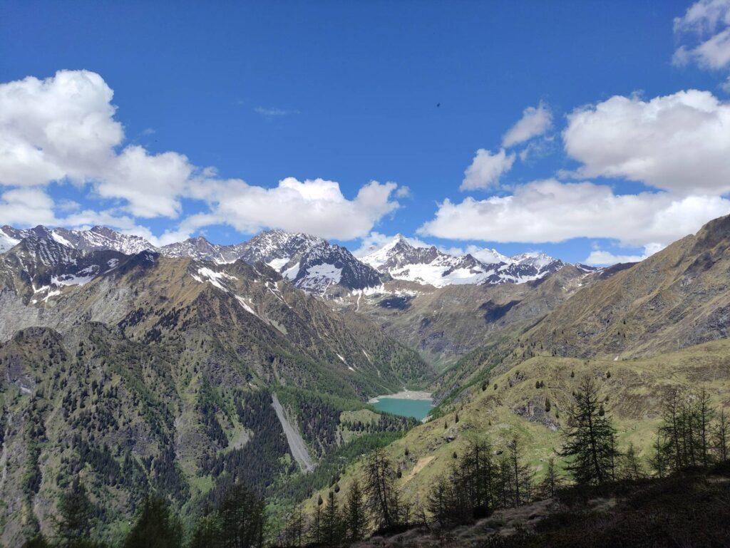 Vista verso l'Alpe Cheggio con il Weissmies a farne da padrone