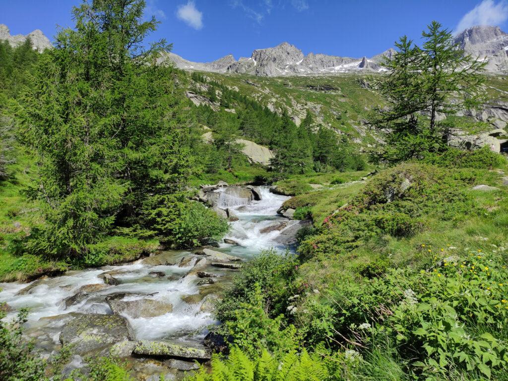 siamo arrivati alla piana dello Zucun, che divide la parte alta e la parte bassa della Val Porcellizzo
