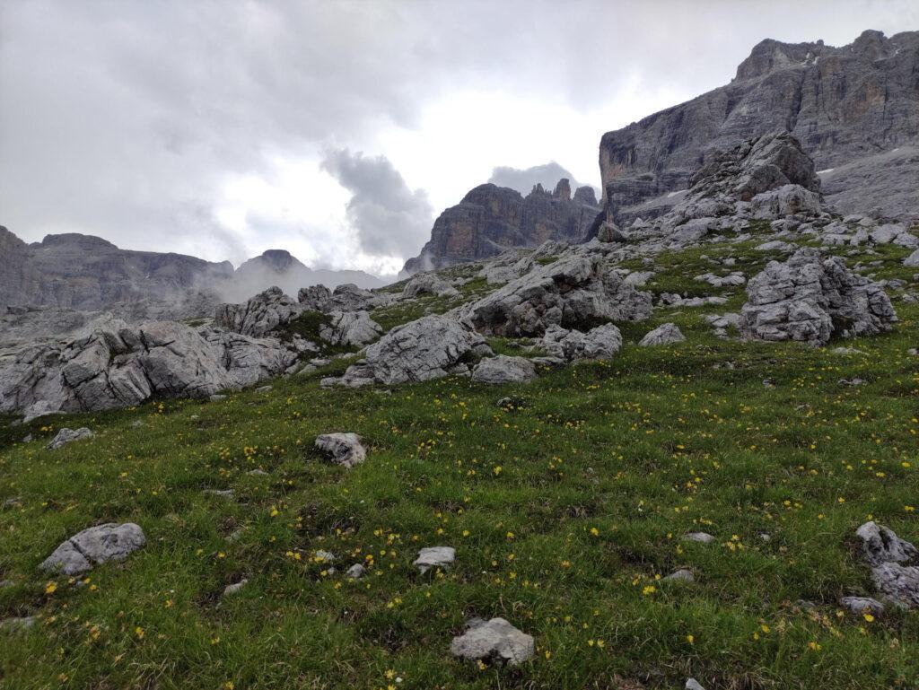 Risaliamo lungo i prati sulla cima dello spallone Irene alla ricerca del sentiero Sosat che passa un centinaio di metri a monte