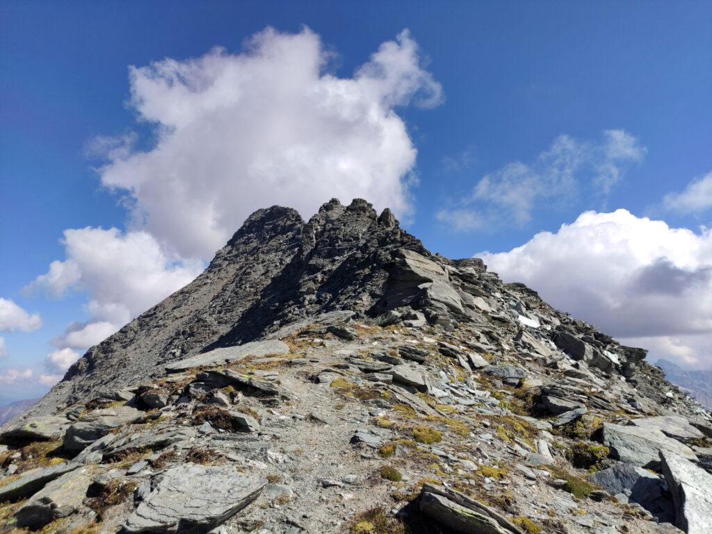 dopo aver raggiunto il passo, iniziamo la lunga galoppata in cresta verso la nostra cima